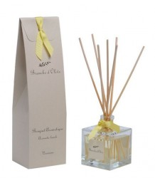 Branche d'Olive - Bouquet Aromatique - Verveine