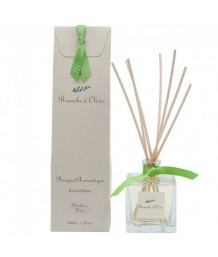 Branche d'Olive - Bouquet Aromatique - Bamboo Lotus