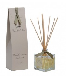 Branche d'Olive - 100ml Diffuser - Garrigue